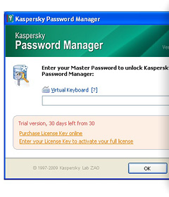 Kaspersky Password Manager Panel